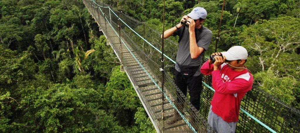 sacha-lodge-canopy-walk
